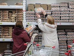 ВЦИОМ: россияне стали питаться более дешевыми продуктами