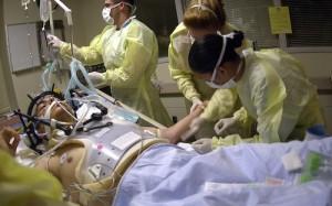 Изучение самовосстановления мозга поможет в лечении черепно-мозговых травм