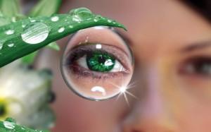 Проверенные средства народной медицины для здоровья глаз