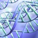 Ученые обнаружили новый фактор риска развития аутизма