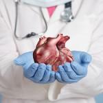 Медики запустили сердце после семичасовой остановки