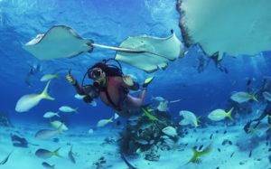 Таиланд закрыл для туристов Симиланские острова