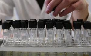 Биолог: получившее Нобелевскую премию открытие может помочь продлить жизнь
