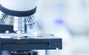 Российские ученые создали биолюминесцентные белки для тестирования лекарств