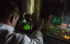 Российские ученые создадут для европейских коллег микроскоп с нанолинзами