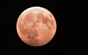«Роскосмос» принял конструкторский макет станции «Луна-25»