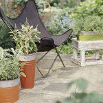 Идеи для начинающих садовых декораторов