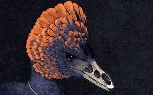 Палеонтологи выяснили, как у динозавров появился клюв