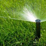 Разновидности полива растений – современные тенденции