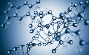Определение отцовства по ДНК: как это сделать