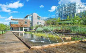 Охрана окружающей среды при строительстве