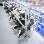 Оборудование для аграрной отрасли Украины: специализированное предложение от «КИЕВОБЛАГРООБОРУДОВАНИЕ»