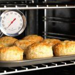 Как выбрать градусник для духовки?