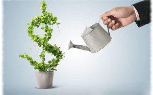 Как открыть выгодный бизнес