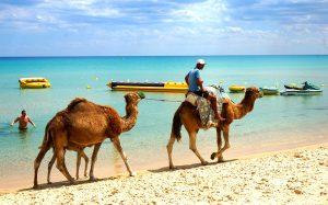 Тунис: падение динара спровоцировало рост турпотока на 13.9%