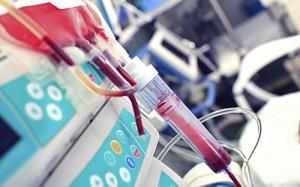 Исцеление молодой кровью