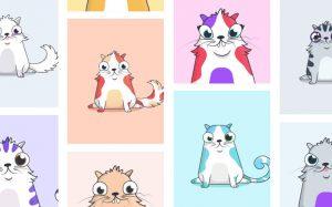 Виртуальные котята против блокчейна