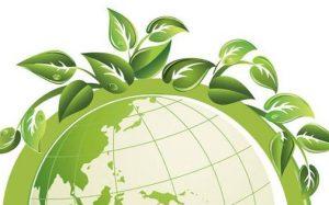 Экологические организации