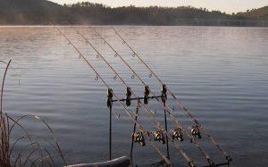 Товары для рыбной ловли