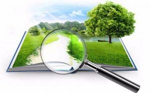 Высококвалифицированная оценка недвижимости и земли от компании «АЛЬЯНС-УКРЭКСПЕРТ»