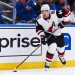 Бьет — значит Любушкин: россиянин тащит «Аризону» в плей-офф НХЛ