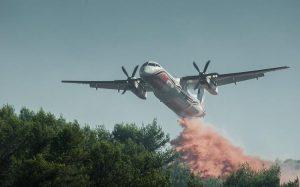 В Австралии наконец-то закончились пожары, бушевавшие с прошлого лета