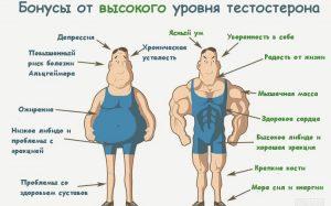 Как поднять уровень тестостерона