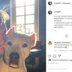 Филипп Янковский изменился до неузнаваемости после исцеления от рака