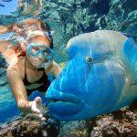Таиланд принял первых иностранных туристов