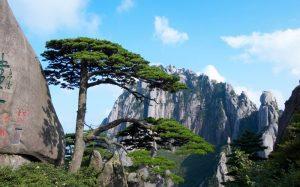 Горы Хуаншань: когда реальность превосходит самые смелые фантазии
