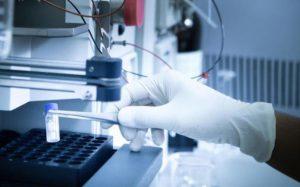 Ученые разработали эффективный метод выработки биотоплива