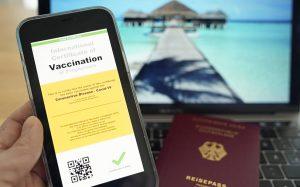 Россияне оценили идею введения иммунных паспортов для путешественников