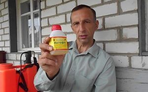 Био-инсектицид «Актофит» — преимущества и недостатки