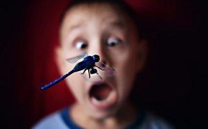 Боязнь насекомых у детей и взрослых