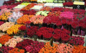Цветочный онлайн-магазин cvetochnay-baza.ru: огромный ассортимент и доставка на выгодных условиях
