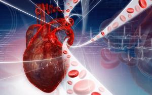 Инфаркт Миокарда — опасность болезни