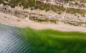 Жительница России обругала отдых в пансионате на Азовском море: «Сдали нервы»
